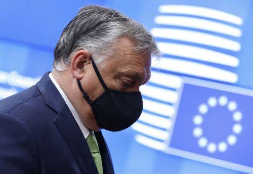 Teure Baustoffe: Orban liebäugelt mit Exportbeschränkungen
