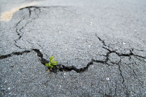 Bodenverbrauch soll bis 2030 um 80 Prozent reduziert werden